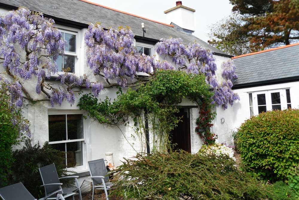croyde-cottage-exterior